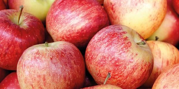 sols pomme